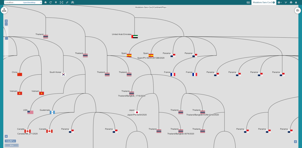 """Carte vMap """"Mutations Sars-Cov2/Continent/Pays"""""""